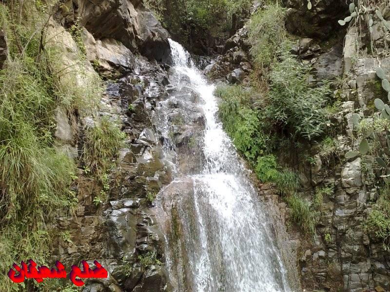 128013881012  رحلة مصورة الى اليمن السعيد 1431هـ ( تعز   اب   صنعاء )...