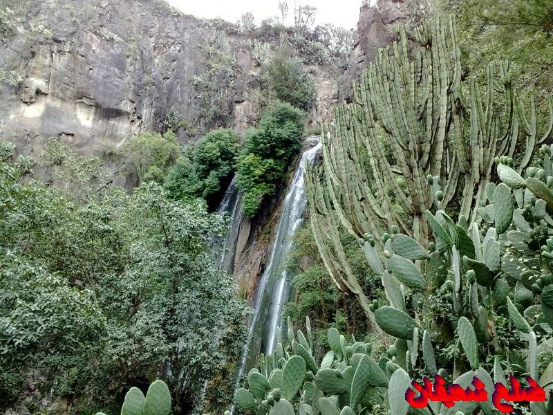 128013881016  رحلة مصورة الى اليمن السعيد 1431هـ ( تعز   اب   صنعاء )...
