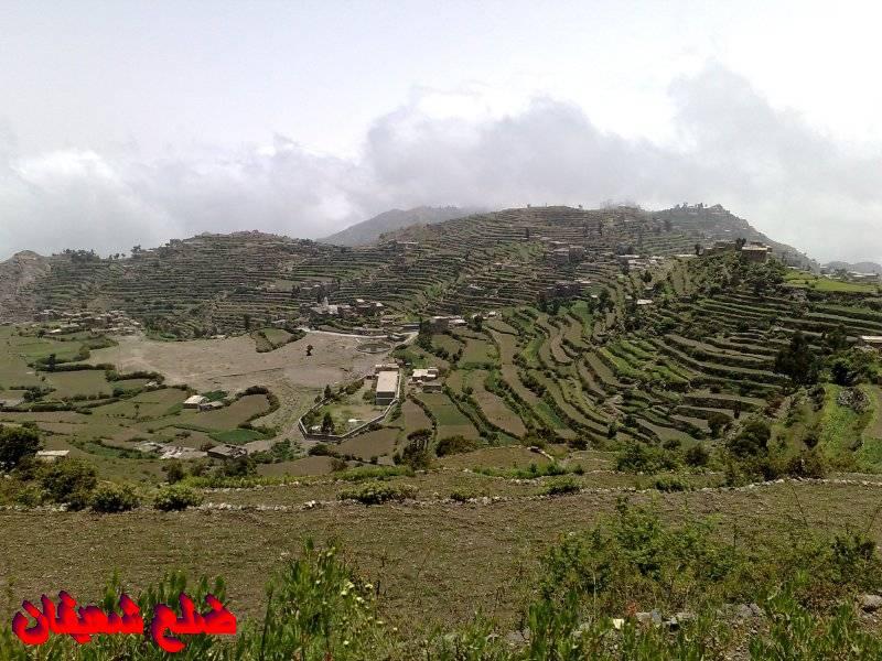 12801388108  رحلة مصورة الى اليمن السعيد 1431هـ ( تعز   اب   صنعاء )...