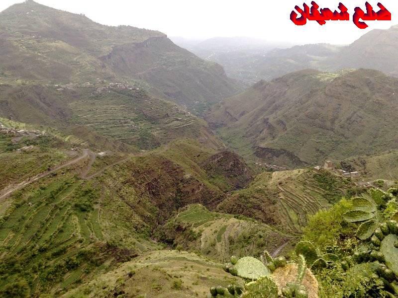 128014021911  رحلة مصورة الى اليمن السعيد 1431هـ ( تعز   اب   صنعاء )...
