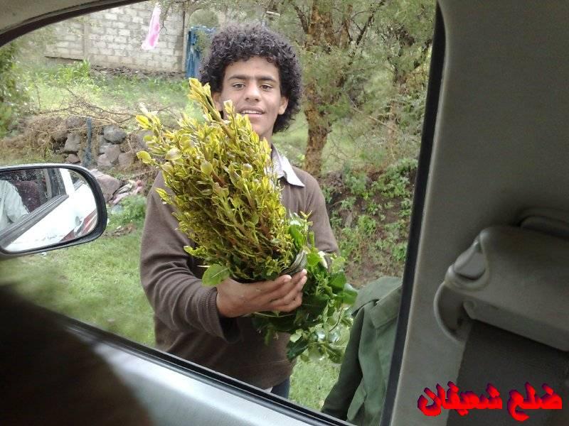 128014021913  رحلة مصورة الى اليمن السعيد 1431هـ ( تعز   اب   صنعاء )...