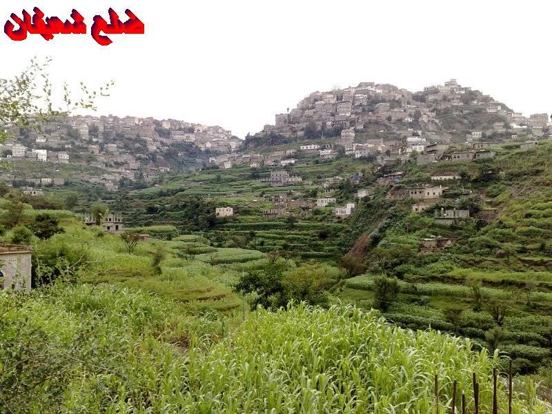 12801408121  رحلة مصورة الى اليمن السعيد 1431هـ ( تعز   اب   صنعاء )...