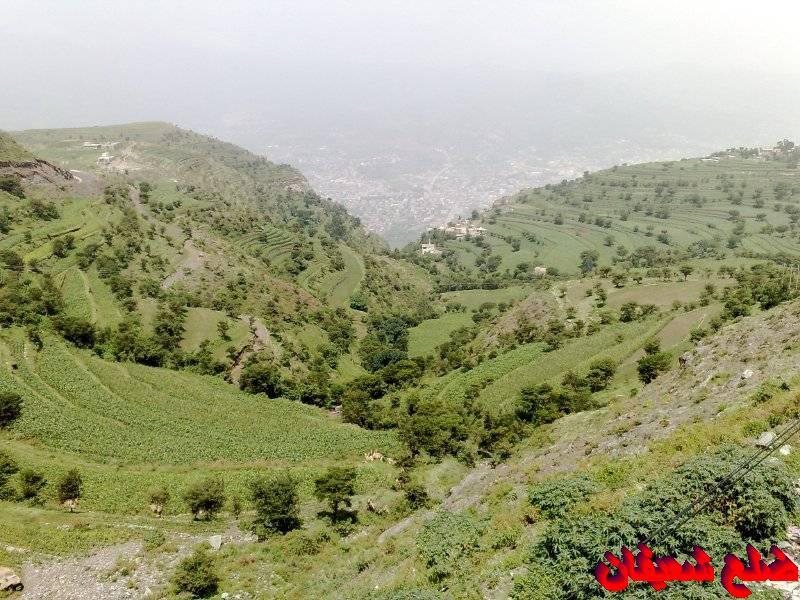 128014128512  رحلة مصورة الى اليمن السعيد 1431هـ ( تعز   اب   صنعاء )...