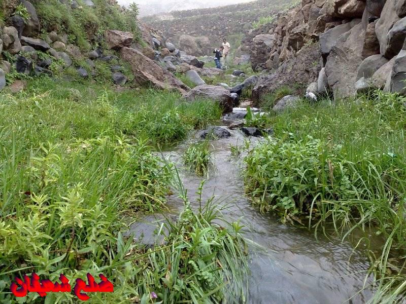 128014228313  رحلة مصورة الى اليمن السعيد 1431هـ ( تعز   اب   صنعاء )...