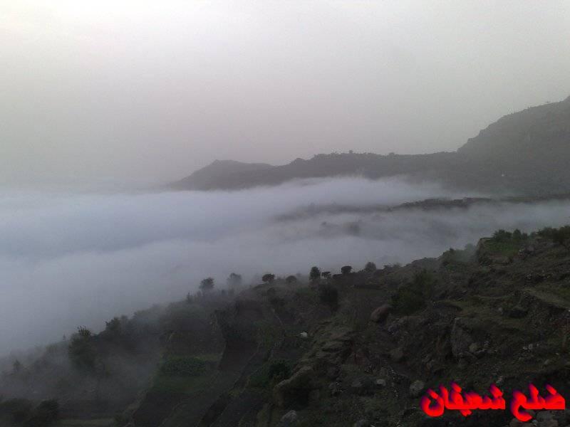 12801426311  رحلة مصورة الى اليمن السعيد 1431هـ ( تعز   اب   صنعاء )...