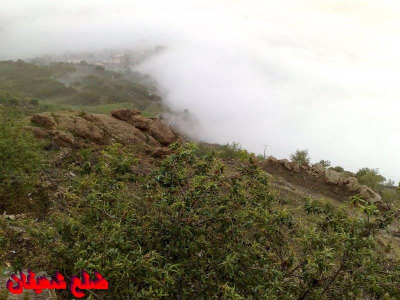 12801426313  رحلة مصورة الى اليمن السعيد 1431هـ ( تعز   اب   صنعاء )...