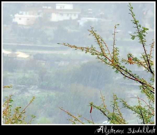 مناظر خلابه من مدينة الباحه