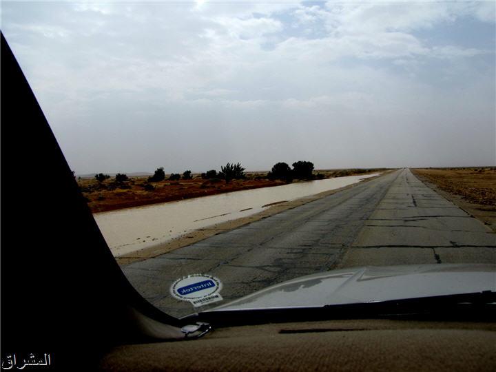 جولة صور( وطريق النكبة الرياض 130017349915.jpg