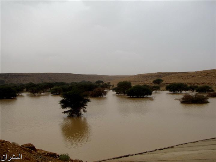 جولة صور( وطريق النكبة الرياض 13001734992.jpg