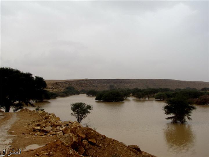 جولة صور( وطريق النكبة الرياض 13001734994.jpg