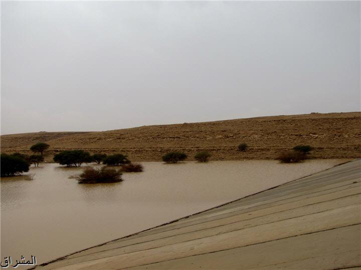 جولة صور( وطريق النكبة الرياض 13001734995.jpg