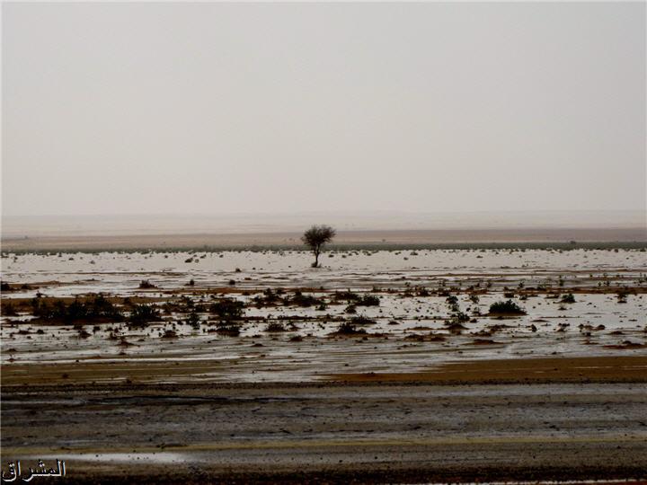 جولة صور( وطريق النكبة الرياض 13001741493.jpg