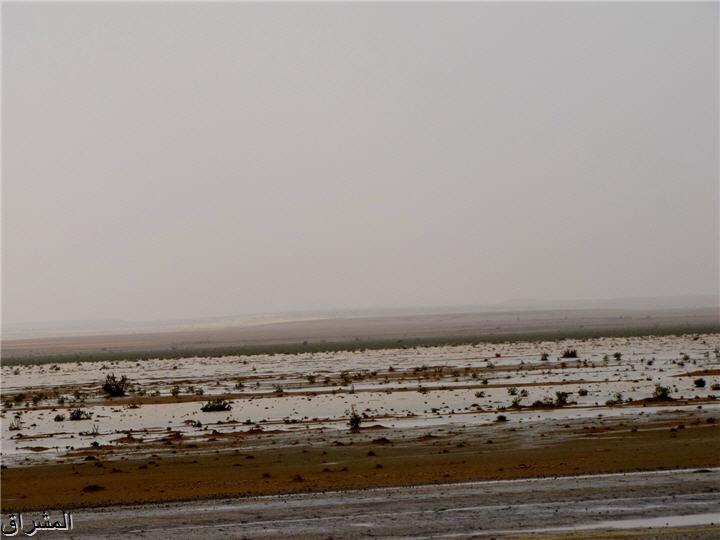 جولة صور( وطريق النكبة الرياض 13001741494.jpg