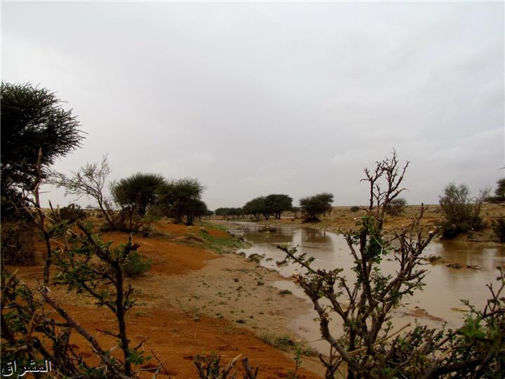 جولة صور( وطريق النكبة الرياض 13001741497.jpg