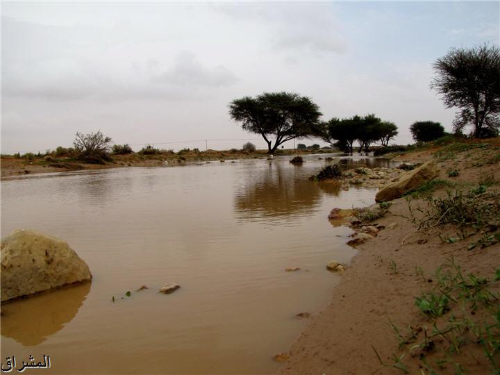 جولة صور( وطريق النكبة الرياض 13001741498.jpg