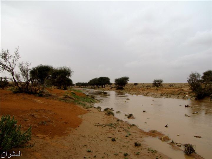 جولة صور( وطريق النكبة الرياض 13001741499.jpg