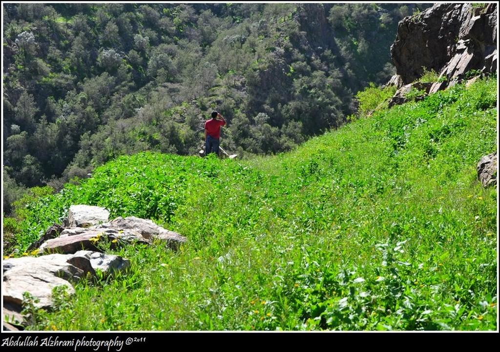صور للربيع من بلاد زهران 130135281615.jpg