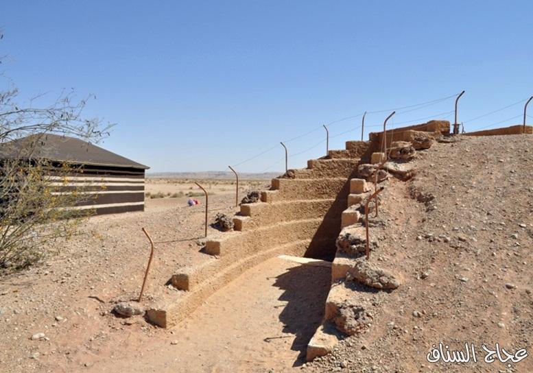 منتزه الثمامة البري  13307761464